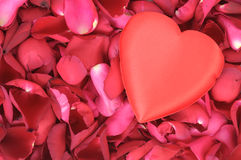 Big heart shape on rose petals Royalty Free Stock Photos