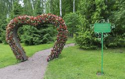 Big Heart (topiary figure) of fresh flowers in the park. Log on Royalty Free Stock Image