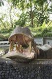 Big hippopotamus hippo mammal feed  concept Stock Image