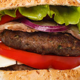 Big home made burger Stock Images