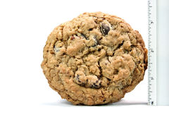 Big Homemade Chocolate Chip Cookie. Three and a half inch homemade chocolate chip cookie with ruler Stock Photos