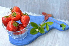 Big, homemade strawberry in transparent dish and blossoming flower on blue board. On white background Stock Images