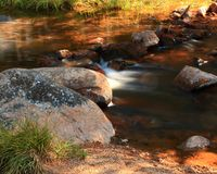 Big Horn Mountain rocky stream. Big Horn Mountain stream called Johnson creek, Wyoming  surrounded by National Forest Royalty Free Stock Images