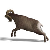 Big horn sheep aries. An aries ram with twisted horns. 3D render with clipping path and shadow over white Stock Photography