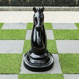 Big Horse Chess Royalty Free Stock Photography
