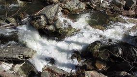 Big Hunting Creek Flow stock footage