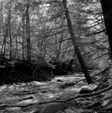 Big Hunting Creek in Maryland