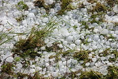 Big ice balls hail on green grass Royalty Free Stock Image