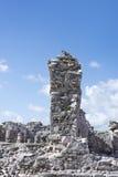 Big iguana/lizard wildlife animal guarding the ancient ruins of Stock Photos