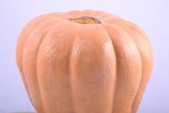 Big image of pumpkin Royalty Free Stock Photography