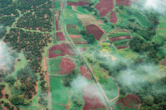 Big Island aerial shot - rain forest Stock Images