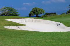 Big Island Golf Experience Stock Photography