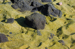 Big Island Green Sand. Green sand covers beach at South Point on the Big Island of Hawaii Stock Photo