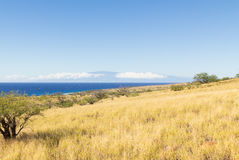 The big Island of Hawaii and Maui. View from the semi desert Kohala grasslands with kaiwe trees on the  Big Island of Hawaii, and across the Pacific Ocean to the Stock Photo