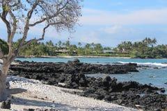 Big Island Hawaii Shoreline. Shore with houses and palm trees along Makawa Bay on the big island of Hawaii north of Kona stock photography