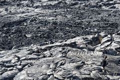 Big island lava fields Royalty Free Stock Photos