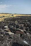Big island lava fields Stock Photos