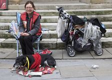 Big Issue and Dog Royalty Free Stock Photography