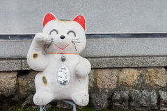 Big Japanese Manekineko Lucky cat doll. Decorated near the wall stock photography