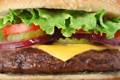 Big juicy hamburger macro Ccoseup Stock Images