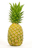 Big Juicy Pineapple Isolated On White Royalty Free Stock Photo