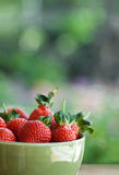Big, juicy strawberries in a bowl Royalty Free Stock Photos