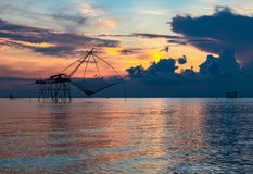 Big kind of fish on beautiful sunrise on the lagoon. View in Phatthalung  Thailand stock photos