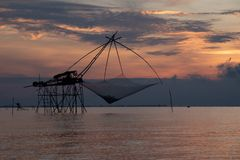 Big kind of fish on beautiful sunrise on the lagoon. View in Phatthalung  Thailand stock images