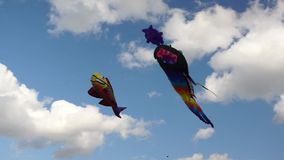 Big kites in the sky stock footage