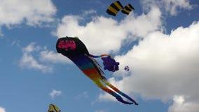 Big kites in the sky stock video