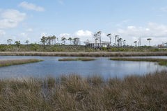 Big Lagoon at Big Lagoon State Park in Pensaocla, Florida Stock Image