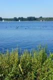 Big lake in Rotterdam Stock Photo