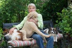 Big Lap Dog Royalty Free Stock Photos