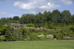 Big lawn fantasy garden Royalty Free Stock Image