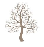 Big leafless tree Stock Images