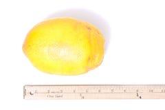 Big lemon Royalty Free Stock Photography