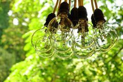 Big Light Bulb Bundle Hanging In A Garden Royalty Free Stock Image