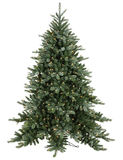 Big lighted Christmas tree Royalty Free Stock Images