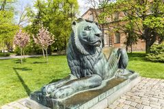 Lion sculpture in Sofia,Bulgaria. Big lion statue in front of the saint Sofia church in the spring stock photos