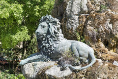 Big Lion statue in Venice,Italy Stock Photo