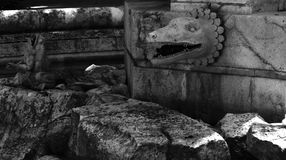 Big lizard on the fountain. Shot in black and white, detail on the sculpture on the  fountain of this historic building representing a lizard. Set in Palacio Stock Image
