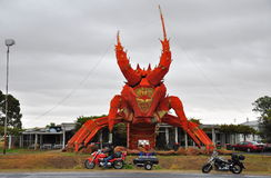 The big lobster Stock Images