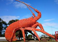 Big Lobster. The Big Lobster is a tourist attraction located in the town of Kingston SE, South Australia. Known locally as Larry the Lobster,[1] the sculpture of stock photography