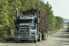 Big Logging truck moving highway wood from harvest field plant Canada ontario quebec Royalty Free Stock Photos
