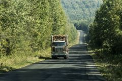 Big Logging truck moving highway wood from harvest field plant Canada ontario quebec. Big Logging truck moving on highway wood from harvest field plant Canada royalty free stock image