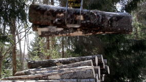 Big logs are added in the pile. Of logs that are found near the trees where some snow are found on the ground. Hydraulic instrument. Machine industry stock video footage