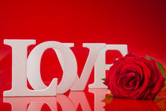 Big love words with red rose flower Royalty Free Stock Images