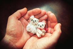 Big man palms holding couple small teddy bear toys carefully. Royalty Free Stock Images