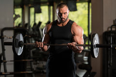 Big Man Standing Strong In The Gym And Exercising Biceps With Barbell Royalty Free Stock Image