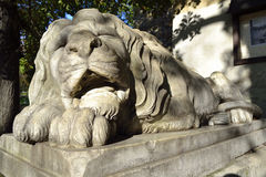 Big marble lion Royalty Free Stock Images